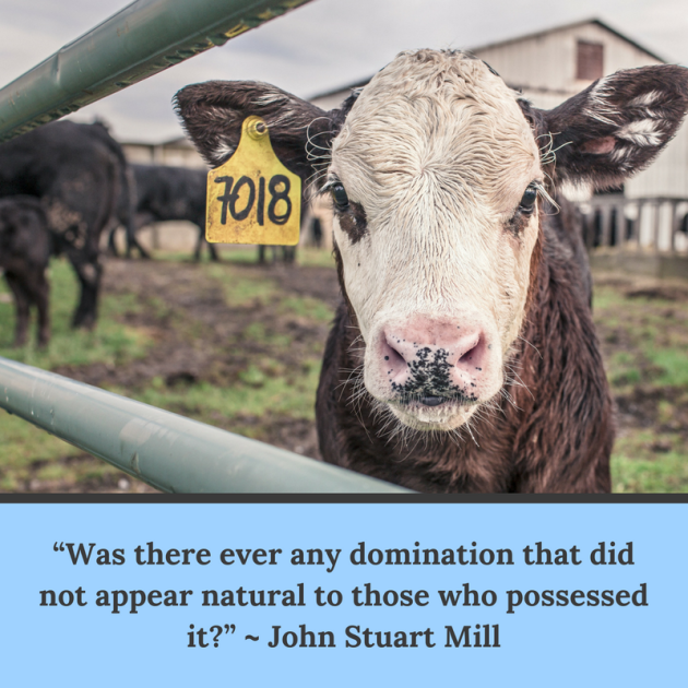 """Was there ever any domination that did not appear natural"" - John Stuart Mill"